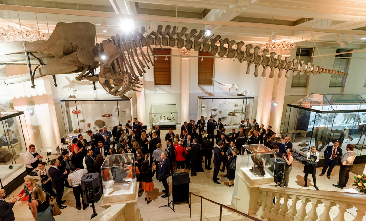 Large crowd of business people standing underneath the skeleton of a dinosaur at the Australia National museum for a corporate business even hosted by Augusta ventures